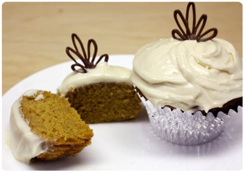 pumpkin cupcake recipe with cream cheese frosting