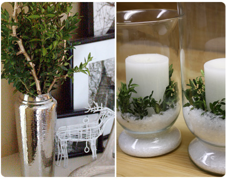 Boxwood holiday decor
