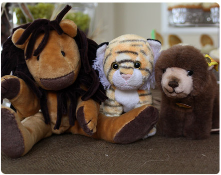 Lions, Tigers and Bears, Oh My!