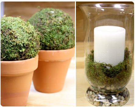 Moss Balls in Pots, Spring Decor
