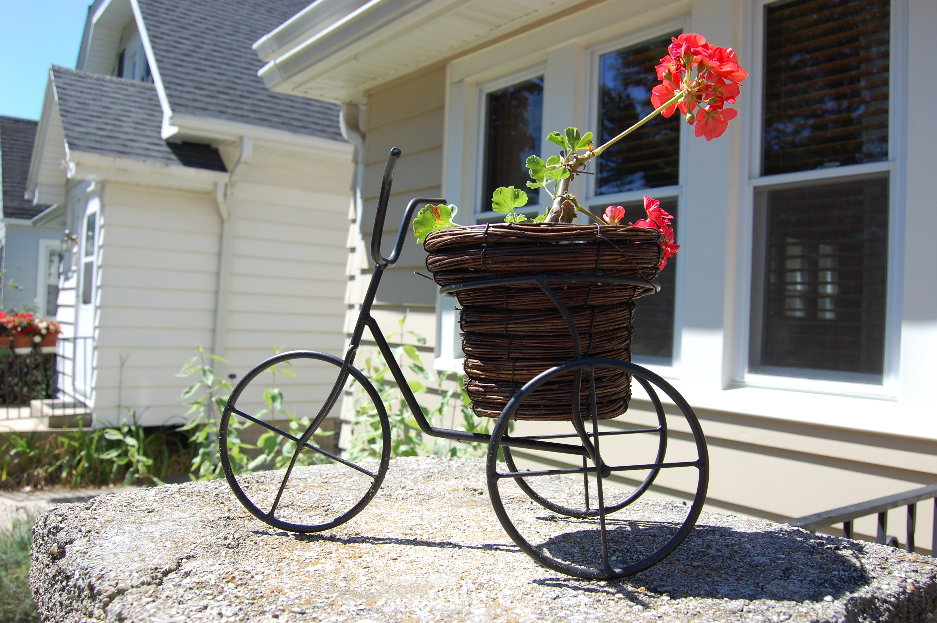 Bicycle planters wedding decorations pinterest Outdoor bicycle
