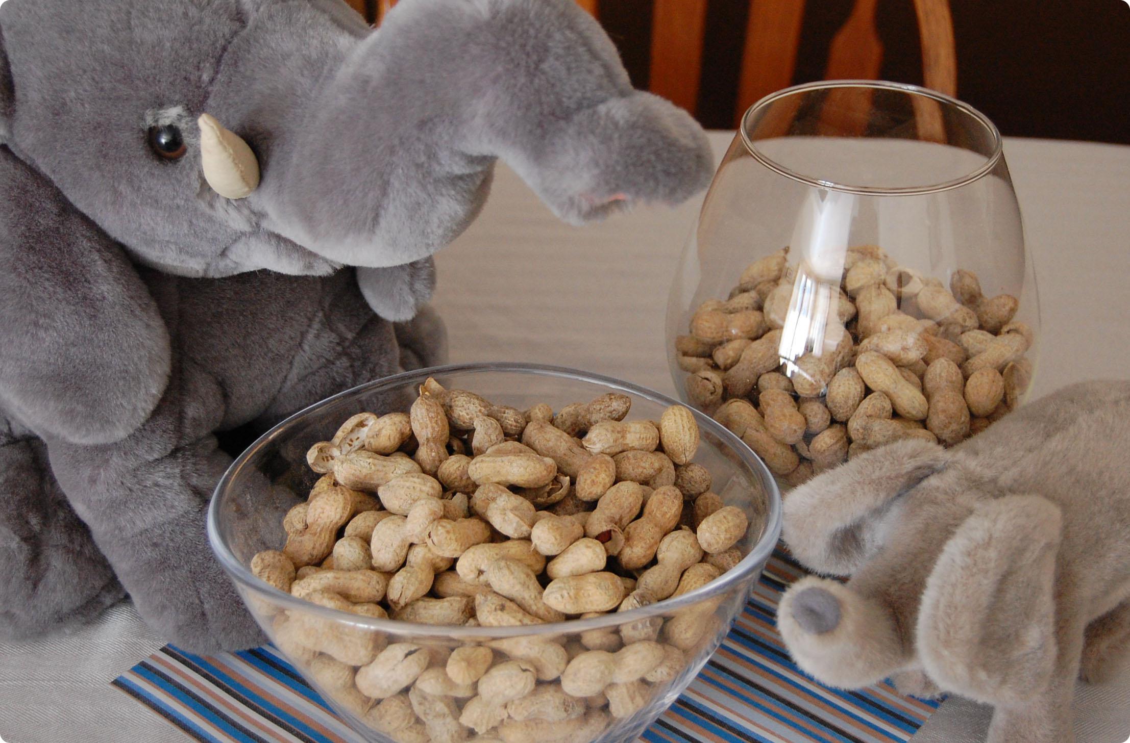 Peanut And Elephant Party