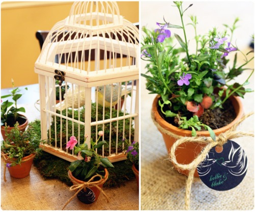 love birds bridal shower decor